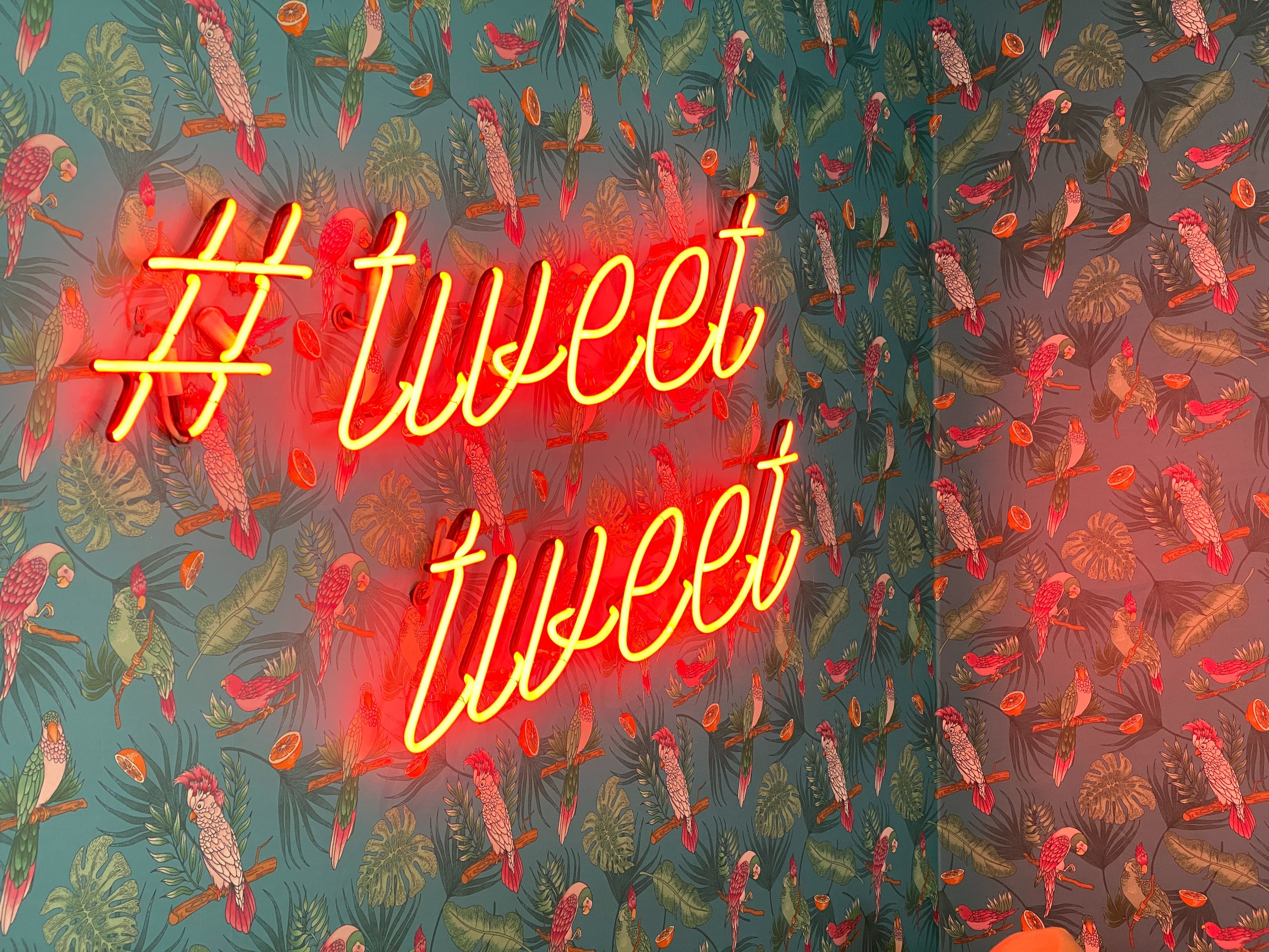 Important Things Twitter Can Tell You About Your Business